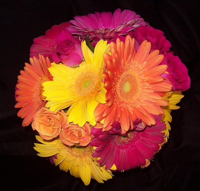 Hot Colors Gerbera Daisy Bridal Bouquet