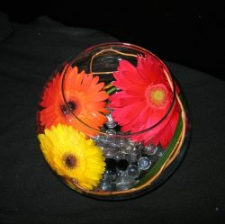 Gerbera Bubble Bowl Centerpiece