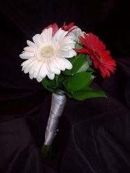 Flower Girl Bouquet of Mini Gerberas