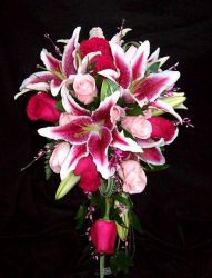 Stargazer Lilies and Roses - Cascade