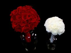 Very Round - Red Rose & White Dianthus Bouquets