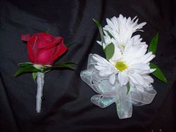 Red Rose Boutonniere & White Daisy Corsage