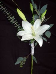 Freeform Handtied - Lilies and Eucalyptus.