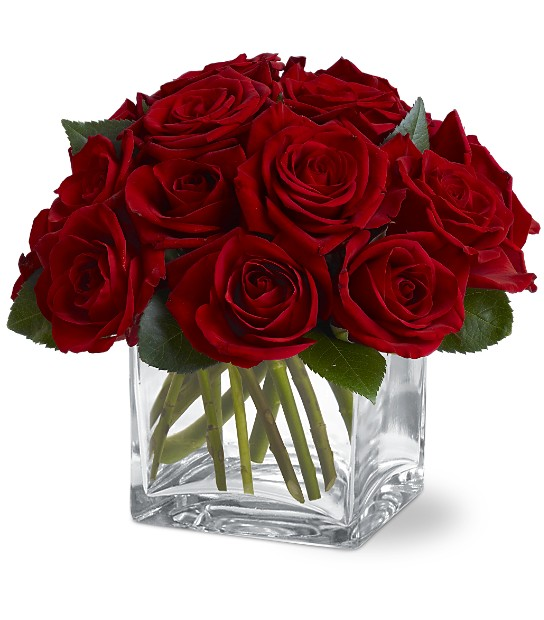 12 Red Roses in a Cube Vase